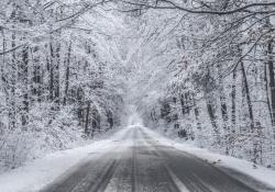 oblodzona droga drzewa w śniegu