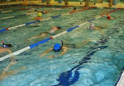 Harmonogram funkcjonowania basenu